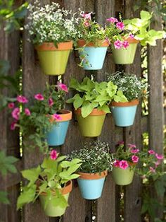 Flower pots on a fence