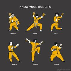 Social Community: Know Different KUNG FU Style