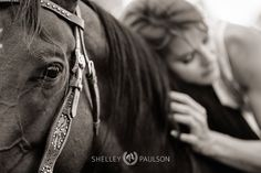 Pro equine photographer Shelley Paulson shares what goes on before, during and after a portrait session, written by @FranticMama, Julia Arnold.