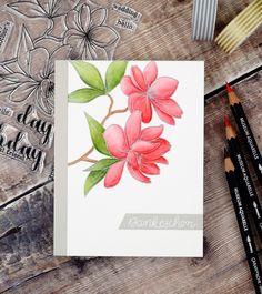 Dankeskarten – Teil 1 // Thank you cards – part 1 Watercolor Pencils, Watercolor Cards, Floral Watercolor, Watercolour, Alcohol Markers, Friends Day, Diy Cards, Homemade Cards, Thank You Cards