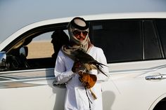 """The owner of an al-Hurr [""""free"""" or """"wild""""], species of falcon prepares to release the bird to chase a pigeon. In English, the bird is known as a """"Saker"""", which is the Arabic word for """"falcon""""."""