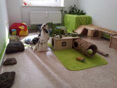 Rabbit Toys, Pet Rabbit, Chinchillas, Bunny Play Pen, Rabbit Information, Rabbit Enclosure, Marshmallow Bunny, Bunny Room, Indoor Rabbit