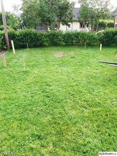 Vårt växthus tar form - Hemma hos Ankaper Gazebo, Pergola, Villa, Cottage Homes, Sunroom, Stepping Stones, Outdoor Structures, Green Houses, Outdoor Decor