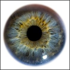 Blue eye:  Iris Eye Macro Stock by ~zpyder on deviantART