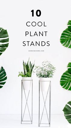 The best plant stands on the market!