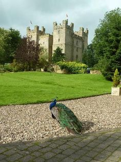 Langley Castle Hotel: Gorgeous setting