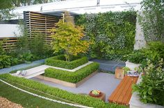 Integrated seating, box hedge, modern garden