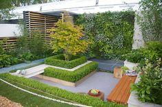 Integrated seating, box hedge, modern garden