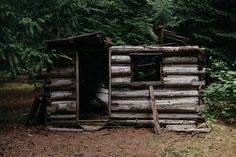 gray wooden handmade shed under green trees photo – Free Nature Image on Unsplash Survival Life Hacks, Survival Quotes, Survival Prepping, Survival Skills, Earthquake Kits, Shelter Design, Led Lantern, Emergency Supplies, Survival Shelter