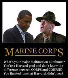 Obama Jokes | MainStreetMonroe.Com Forums - Obama Jokes