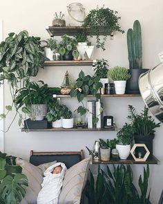 "@urbanjungleblog) on Instagram: #plantshelfie perfection! by @melissamlo…"""