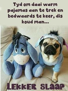 Good Night Messages, Good Night Quotes, Cold Sleep, Evening Greetings, Good Night Friends, Good Night Blessings, Goeie Nag, Afrikaans Quotes, Good Night Sweet Dreams