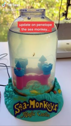 Sea Monkeys, Snow Globes, Castle, Audio, Fans, Coding, The Originals, Instagram, Castles