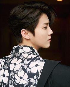 Hunhan, Exo Ot12, Baekhyun, Big Bang Top, Huang Zi Tao, Luis Royo, Jung Yong Hwa, Lee Jong Suk, Cnblue