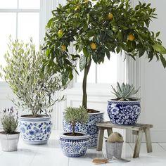 Blue & White Ceramic Planter, Small