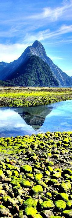 9. Milford Sound Milford Sound / Piopiotahi is a fiord in the south west of New Zealand's South Island within Fiordland National Park, Piopiotahi (Milford Sound) Marine Reserve, and the Te Wahipounamu World Heritage site. It has been judged the world's top travel destination in an international survey and is acclaimed as New Zealand's most famous …