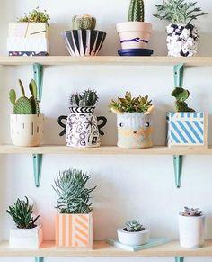 love these succulents in different pots! #shelfie #decor