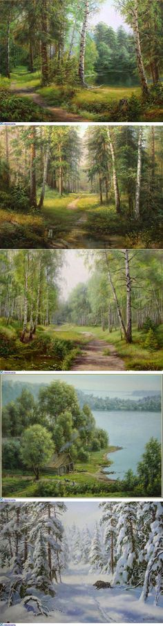 Some forest environments