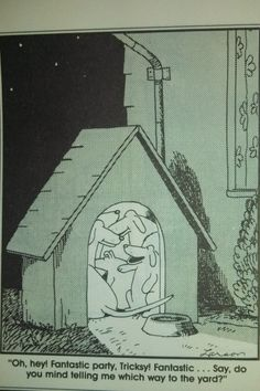 The Far Side comics by Gary Larson  Which way to the yard?
