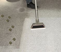 What is the best carpet cleaning service in Mission, KS?