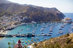 Catalina island....off of the coast of Long Beach