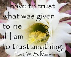"""I have to trust what was given to me if I am to trust anything.""  -- Pulitzer Prize-winning #poet, W.S. Merwin -- more #quotes on #creativity at http://www.examiner.com/article/twelve-penetrating-quotes-on-creativity"