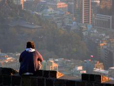 Una serie de espacios idílicos para ejercer en la ciudad una de las actividades humanas más sencillas y hermosas: la contemplación