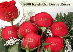 Today was the first Kentucky Derby in 1875! Speaking Roses is proud to have been part of the Kentucky Derby! www.speakingroses.com