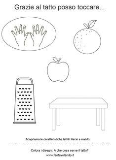 I cinque sensi (le schede) - Fantavolando Teaching, Princess, Baby, November, Shape, School, Education, Baby Humor, Infant