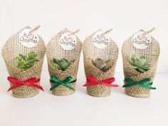 Christmas Succulent Favors Wrapped in Burlap | Etsy