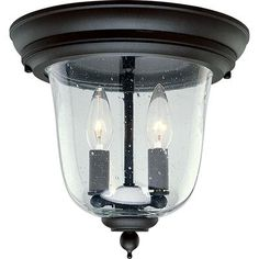 Progress Lighting - Ashmore Collection Textured Black 2-light Outdoor Flushmount - 785247556229 - Home Depot Canada