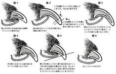 長くなった犬の爪の中にある血管と神経(クイック)どうすればよいの〜?という方にうまい事説明したダイアグラム(図)を発見しましたので、訳してみました。イラストを描かれた方にクレジット差し上げたかったのですが見つからなかった ... 続きを読む