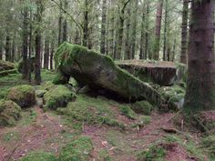 Collapsed Wedge Cairn, Cavan's Burren (Ireland)    Pic from my friend John Willmott - Labrynth Keeper and  tree lore storyteller at Celtic Ways - Ballinafad, Ireland.