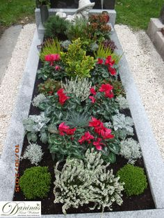 Grabgestaltung-selber-machen Idea grave planting for autumn, All Saints' Day – cyclamen, heather and barbed wire plant Memorial Garden, Front Garden Entrance, Plants, Front Landscaping, Hydrangea Care, Memorial Flowers, Outdoor Gardens, Flowers, Container Gardening