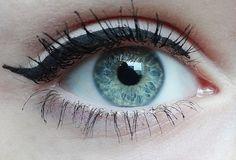 cat-eye//