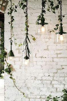 Whitewashed brick walls with drop lighting fixtures and plants - what more could one ask for?