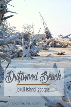 A Hauntingly Beautiful Spot at the Edge of the World: Driftwood Beach, Jekyll Island, Georgia | http://CosmosMariners.com