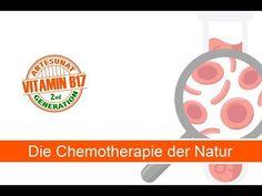 Aprikosenkerne gegen Krebs | Interview mit Dr. Andreas Puttich