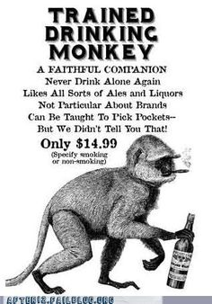 Drinking Monkey -Trained Drinking Monkey - An . Drinking Monkey -Trained Drinking Monkey - An American Monkey after getting drunk on brandy would never touch it again, and thus is