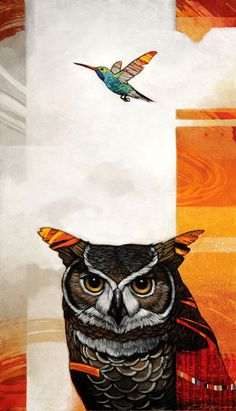 °Owl & HummingBird by CraigKosak