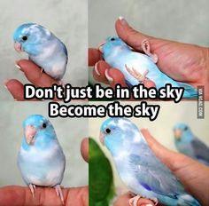 so adorable and inspiring