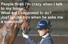 I get so many weird looks when I'm talking to my horse and I don't understand why.  Horses, well they listen and you definitely can't ignore your horse if he asks a question. It's rude.