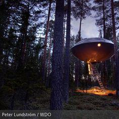 **Inmitten der dichten Wälder des nordschwedischen Lapplands, nur 60 Kilometer vom Polarkreis entfernt, befindet sich das wohl stylischste Baumhaus-Hotel der…