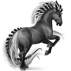 Pony Newfoundland Pony Flaxen Chestnut