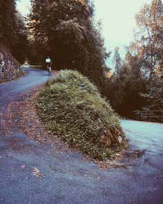 For those who love a steep climb. The of the Passo di Mortirolo are a very serious test of the legs. Climbers, The Outsiders, Cycling, Country Roads, Legs, Band, Instagram, Road Racer Bike, Biking