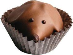 chocolate, chocolate peanut butter, peanut butter pups, chocolate dachshunds, dachshunds, dogs