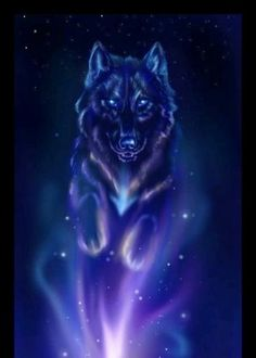 Starry Wolf