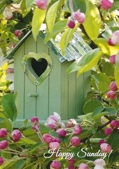 Lovely Lovely Spring Time-This is my favorite bird house so far! Dream Garden, Garden Art, Beautiful Birds, Beautiful Gardens, Simply Beautiful, Estilo Country, Bird Cages, Bird Feathers, Bird Houses