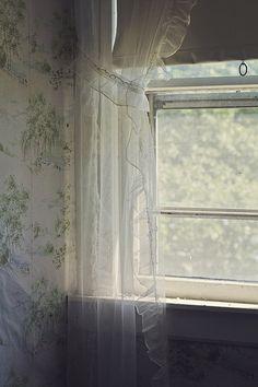 light through the window Farm House Colors, Window View, Lace Window, Britt Robertson, Window Dressings, Through The Window, Cozy Cottage, Lake Cottage, Green Gables
