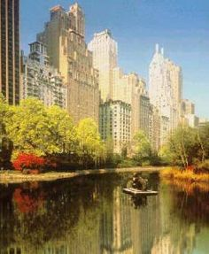 The Ritz-Carlton New York, Central Park, New York City. 7 on the Top 10 Best Hotels in the USA.